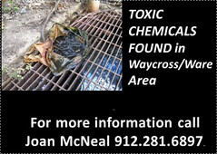 Contact Joan McNeal 912-281-6897