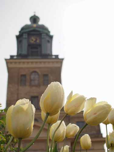 136/366 - In front of Domkyrka by Flubie