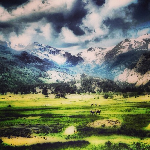 #colorado #rockies by @MySoDotCom