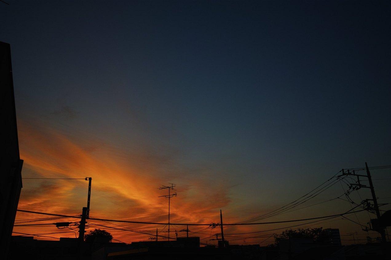 TOKYO DP1Q1227