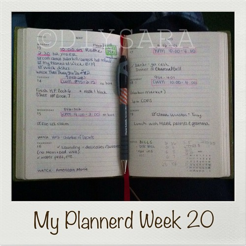 My Plannerd Week Twenty