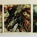 Lode, 28cm x 10cm, collagraph monoprint