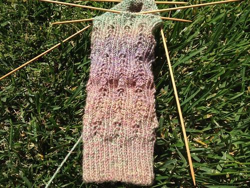 Spring Haiku Socks