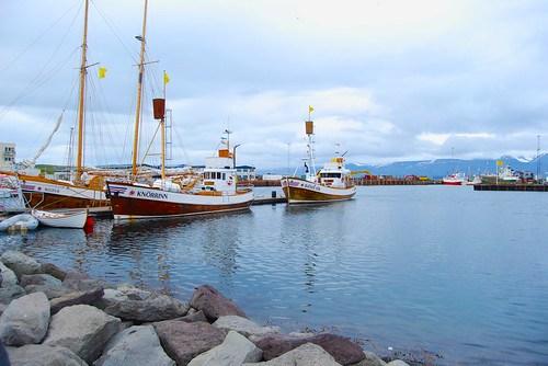 Barcos para ir a ver ballenas - CC Roser Martínez