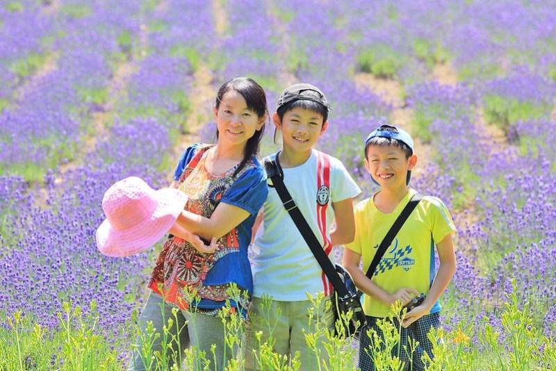 薰衣草,紫色的夢幻