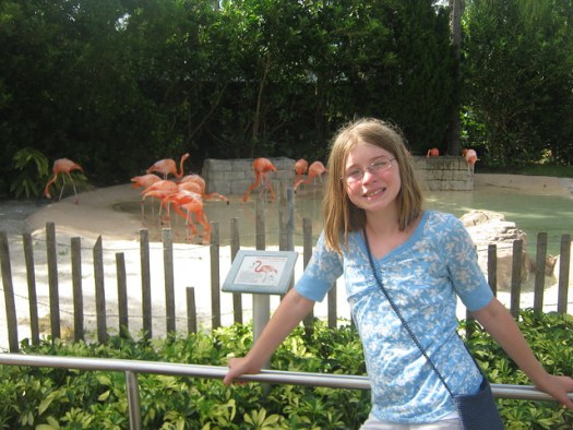 Aly and Flamingos at Sea World
