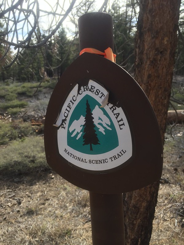 PCT Day 24