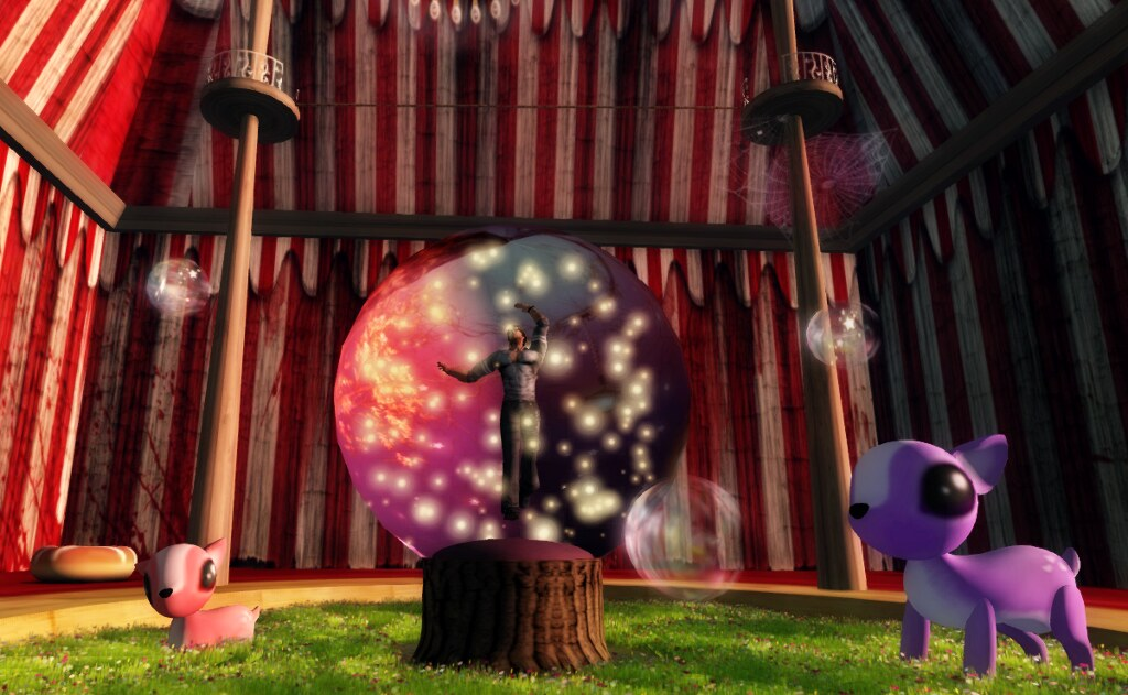 The Mystic Dream: in the circus