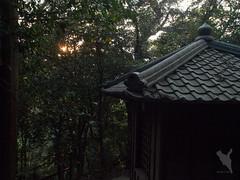 蓮華寺奥の院