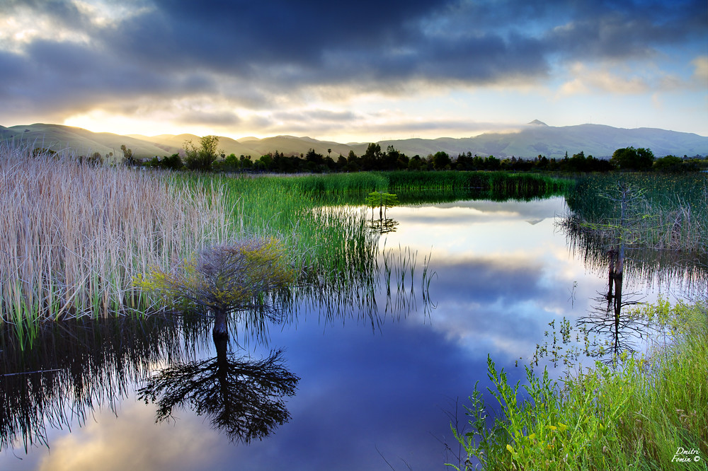 Morning stillness - Fremont