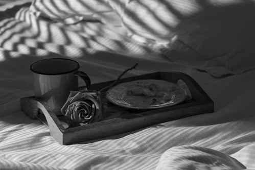 Sunny Morning by Luiz L.