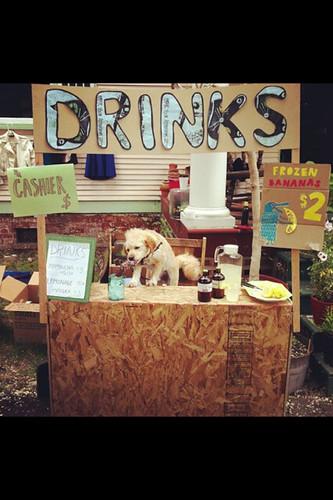 Doggie cashier
