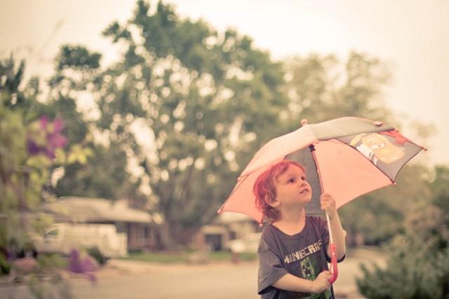 Umbrellas in the yard.