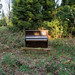 20130505-sam_bailey_forest_piano-018