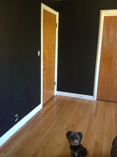 Paint is Black Onyx by Benjamin Moore