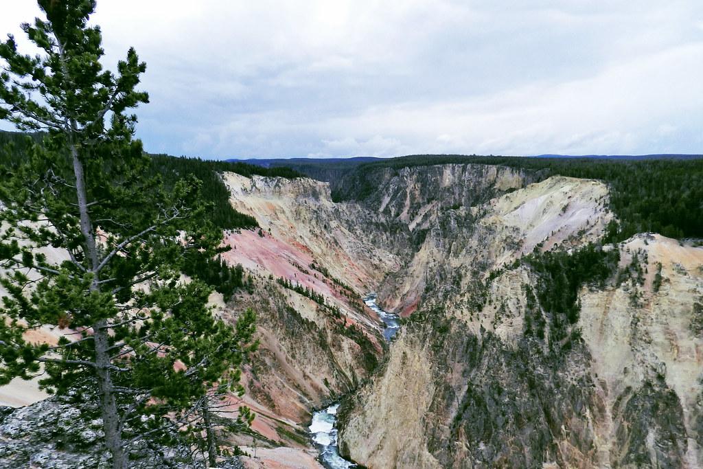 Gran Cañon Parque Nacional de Yellowstone EEUU 09