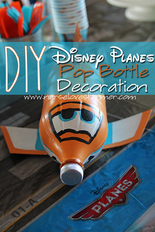 Braden's Disney Planes 4th Birthday Party (5/6)