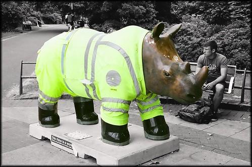 Go Rhinos : Seymour by Davidap2009
