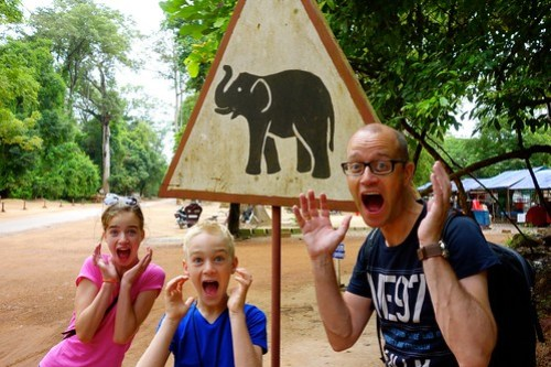 Elephants crossing the road sign