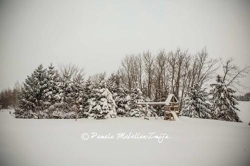 20140106-328C2876-WM by {Pamela Zmija Photography}