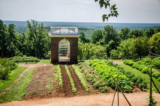 Monticello Garden