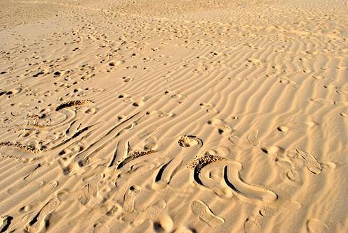 Leaving my mark on the dune - Jockey National Park