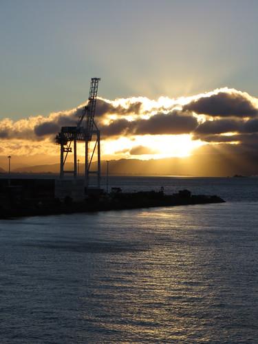 sunrise in wellington harbour