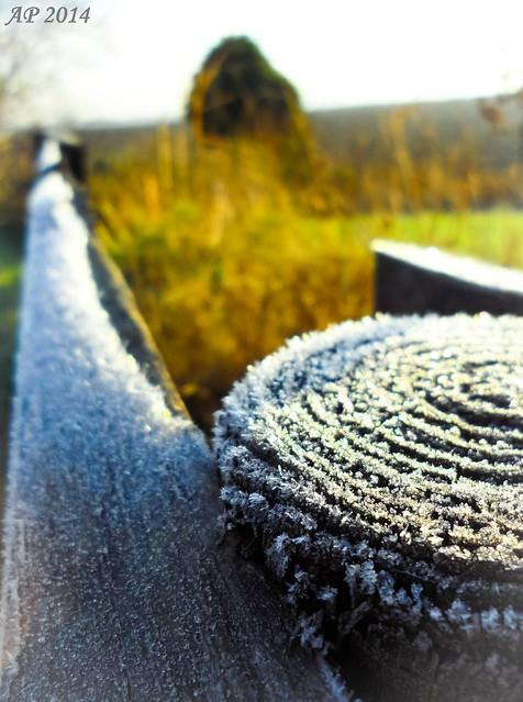 Matin d'hiver / Winter Morning