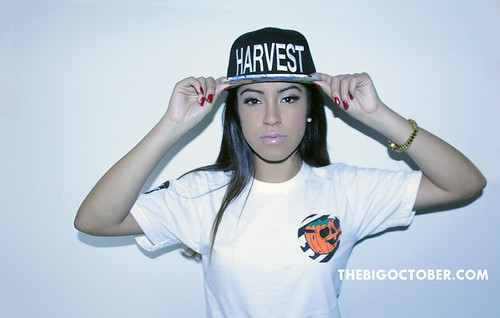 Harvest Snap Back