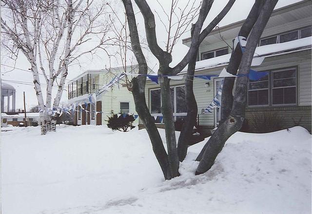 snow 1149
