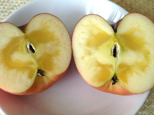 親戚のお家でつくっている江刺リンゴのふじ。蜜がいっぱい入っているのがデフォ。