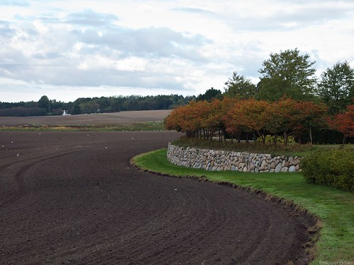 Cultivated land and Kirke Værløse