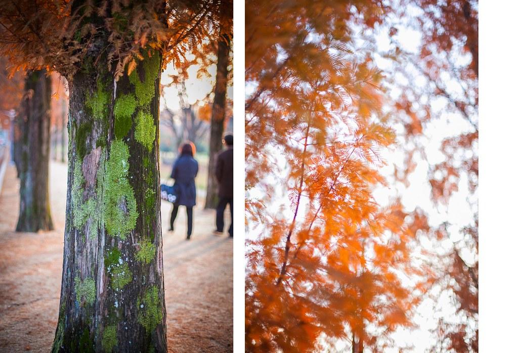 Fall Seoul State of Mind 011