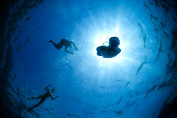 Jugando a freedivers