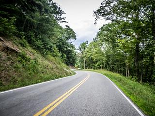 Viriginia Road