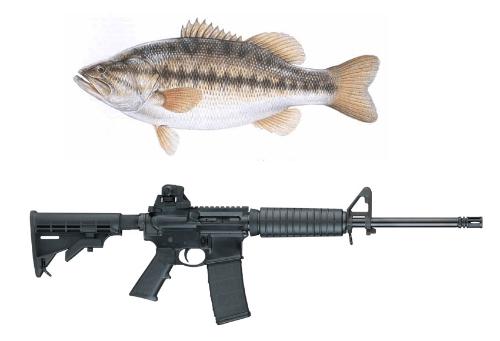 Assault Rifles Stolen From Bass Fishing Shop