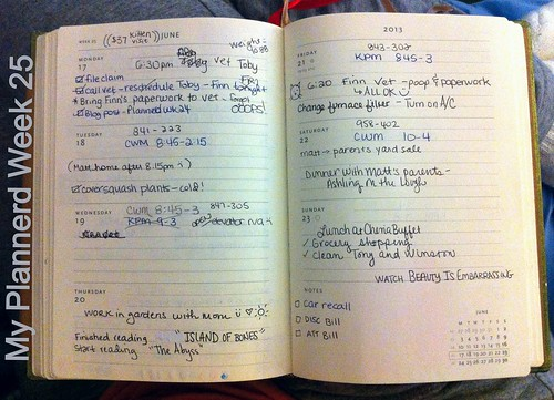 My Plannerd Week 25