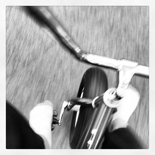 #cowabungas bike ride