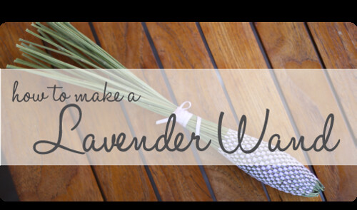 Lavender-Wand-500