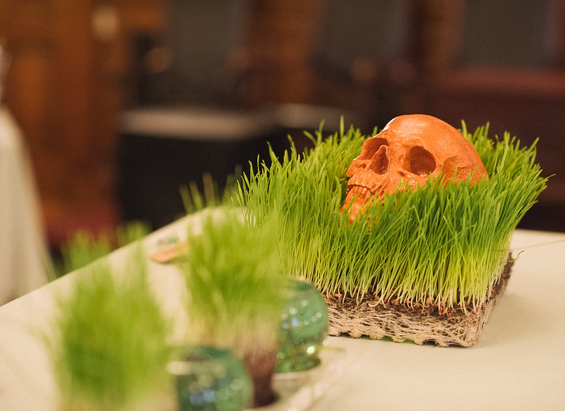 Glitter Skull in Wheatgrass
