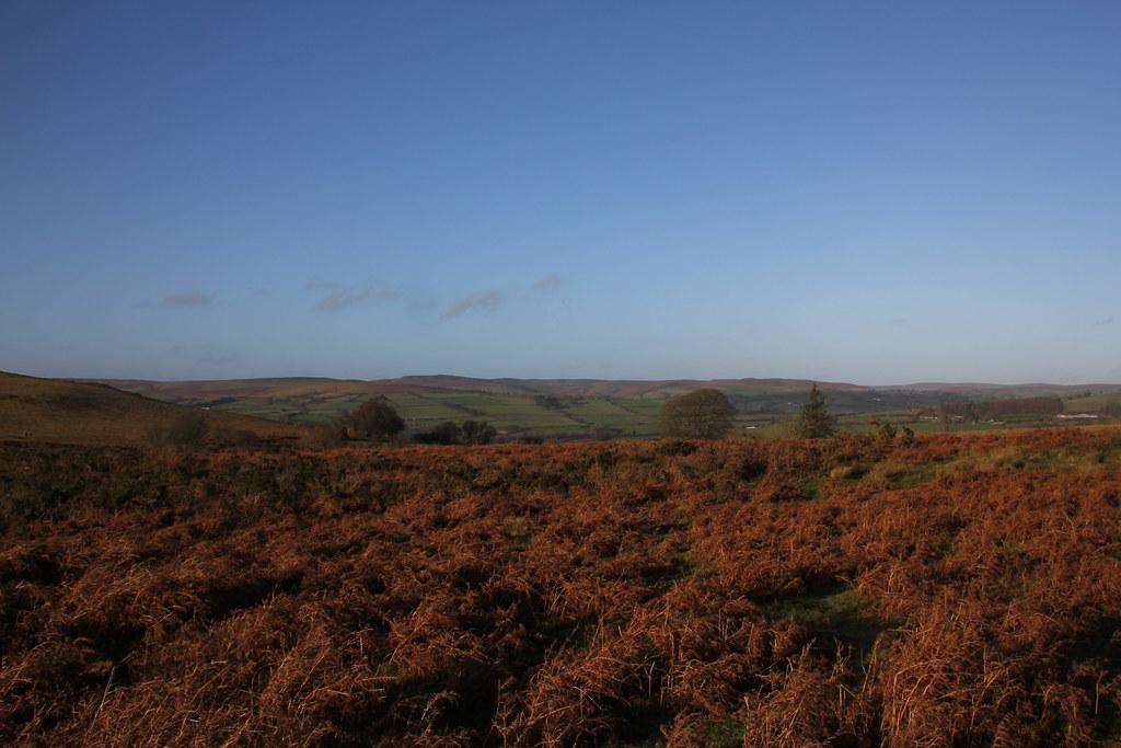 The Begwyns, llanbedr hill, glascwm hill, gladestry hill