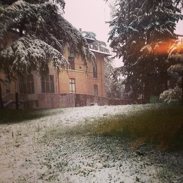 Il parco con la neve #snow #neve #inverno #winter #giriingiro #viaggioinromagna #forli