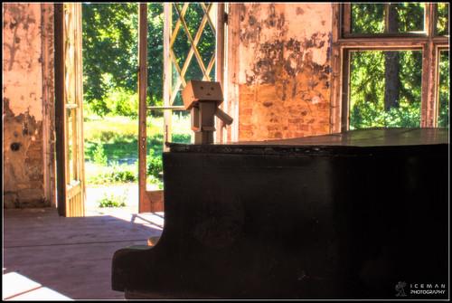 Piano Danbo