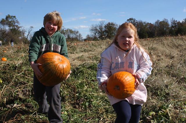 Toting Pumpkins