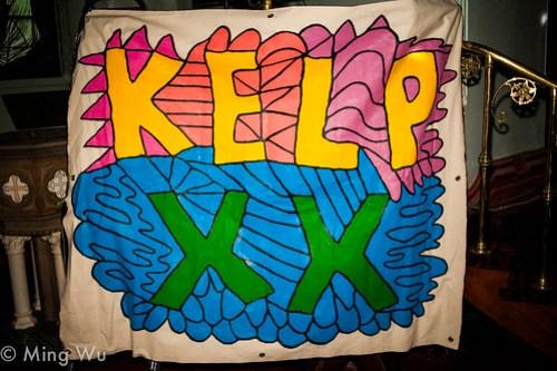Kelp 20