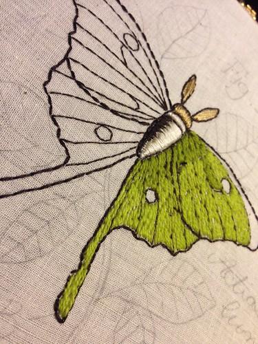 Luna moth WIP - pattern via Urban Threads
