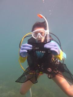 Underwater Marigolds