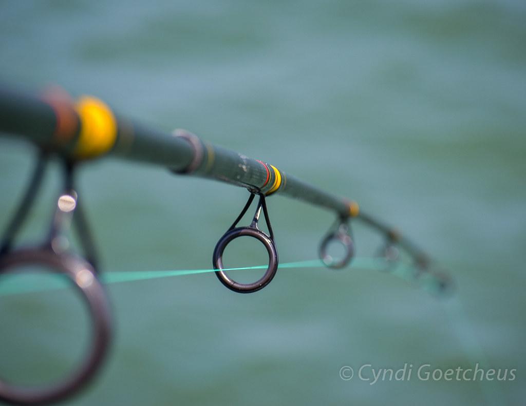 cjane fishing