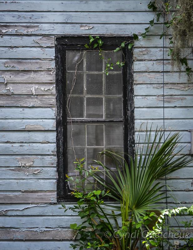 cjane beaufort window