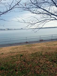low-lying fog on the Potomac